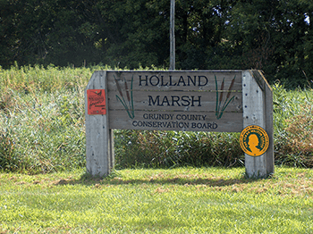 Holland-Marsh350